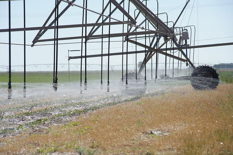 Farmers are depleting the Ogallala Aquifer because the government pays them to do it