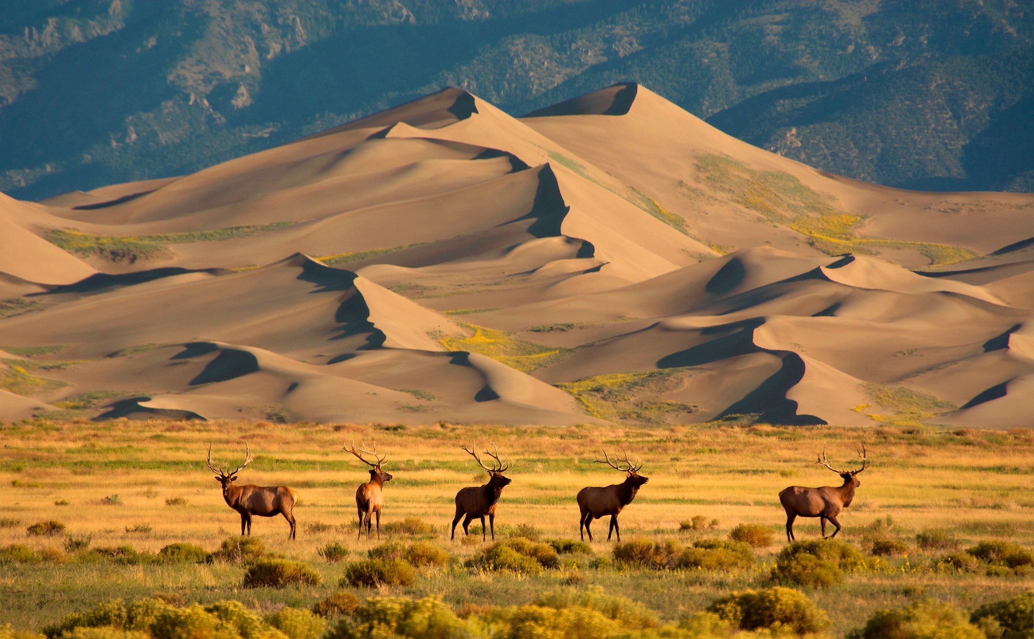 U.S. House panel divides on party lines over how to better conserve public lands